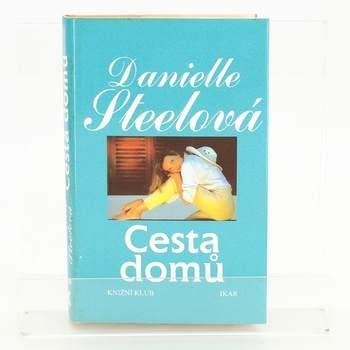 Kniha Danielle Steelová: Cesta domů