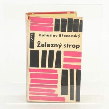 Kniha Bohuslav Březovský: Železný strop