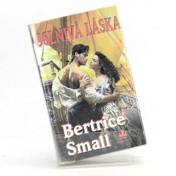 Bertrice Small: Oslnivá láska