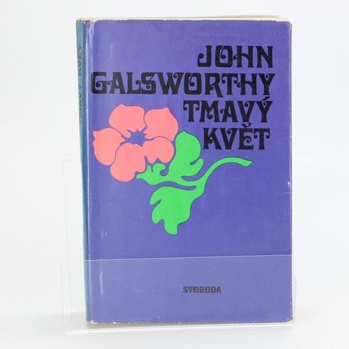 Kniha SVOBODA Tmavý květ