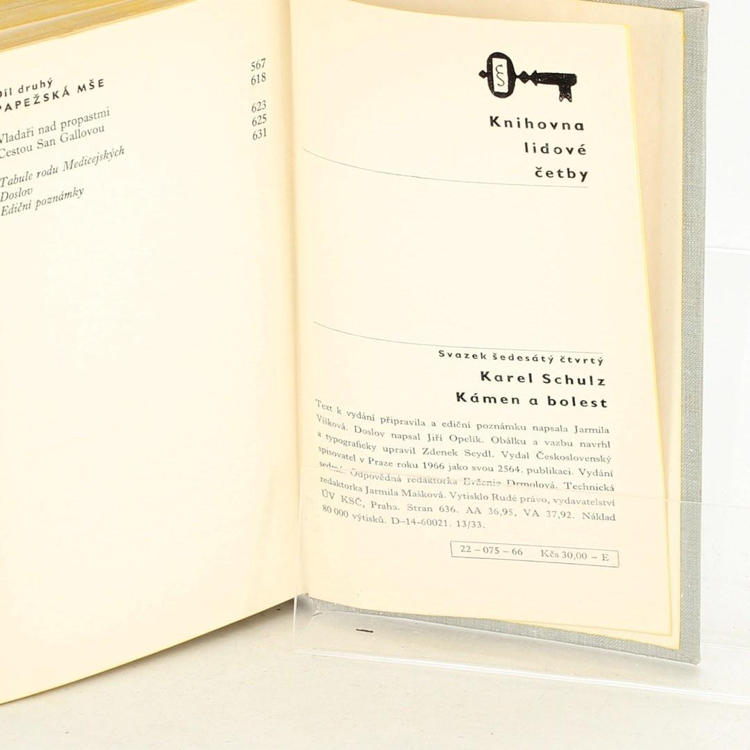 Kniha Karel Schulz: Kámen a bolest