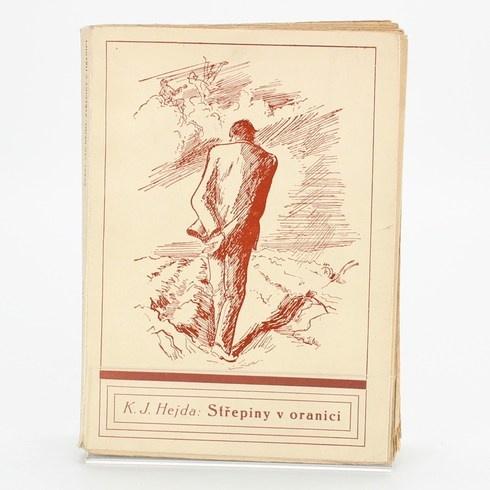 Kniha Střepiny v oranici