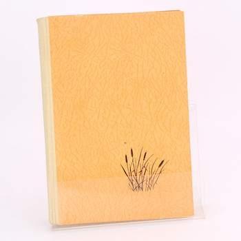 Kniha Svatba na Šibeničním vrchu B.Pernica