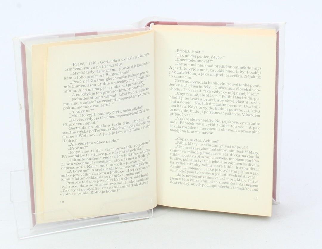 Kniha Frieda Birkner-Mahlerová: Hledá se komorník
