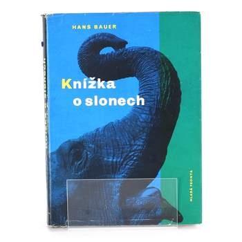 Kniha Mladá fronta Knnížka o slonech Hans Bauer