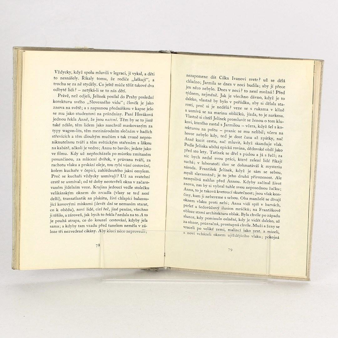 Kniha Marie Pujmanová: Předtucha