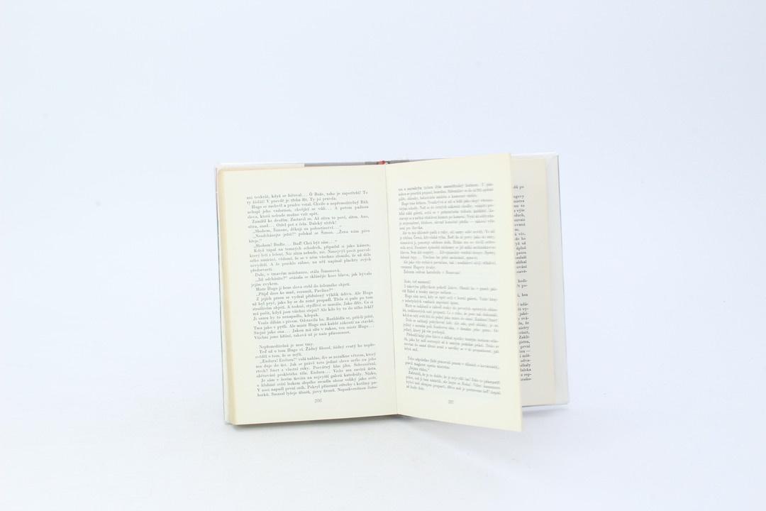 Kniha Hanna Malewska: Kamení bude volat