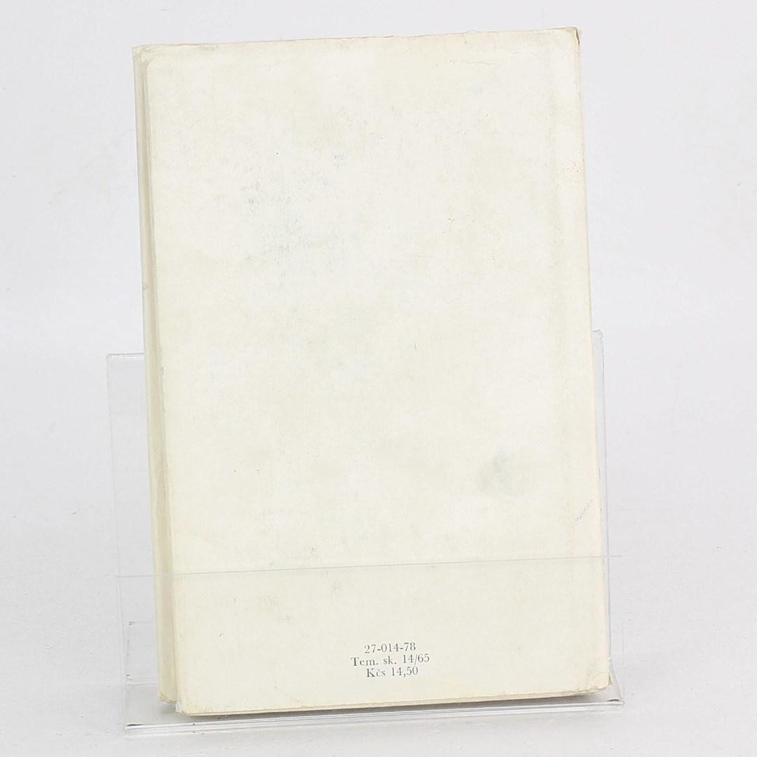 Kniha Holky na bruslích