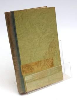 Kniha Antoon Coolen: Ves u řeky