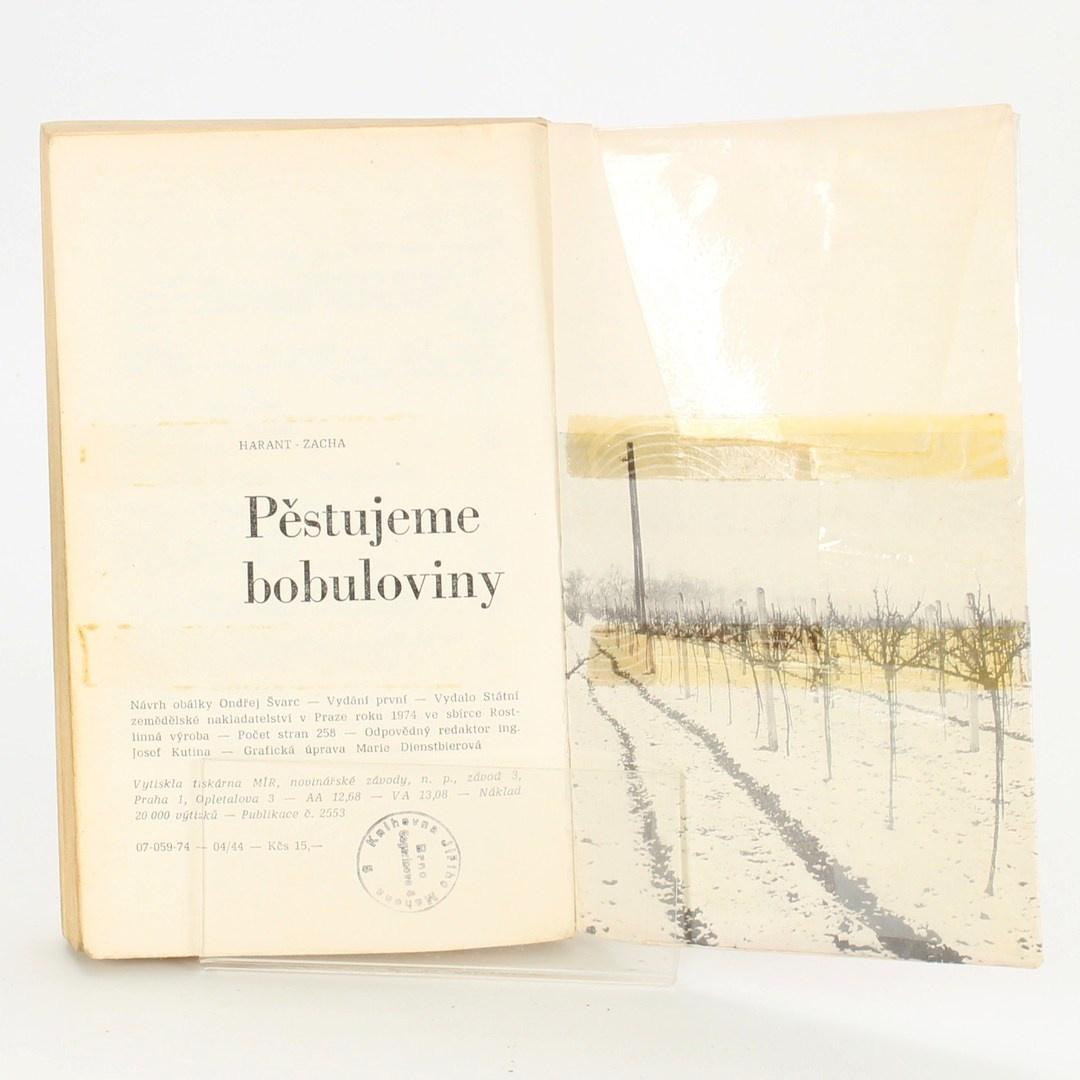 Kniha Pěstujeme bobuloviny
