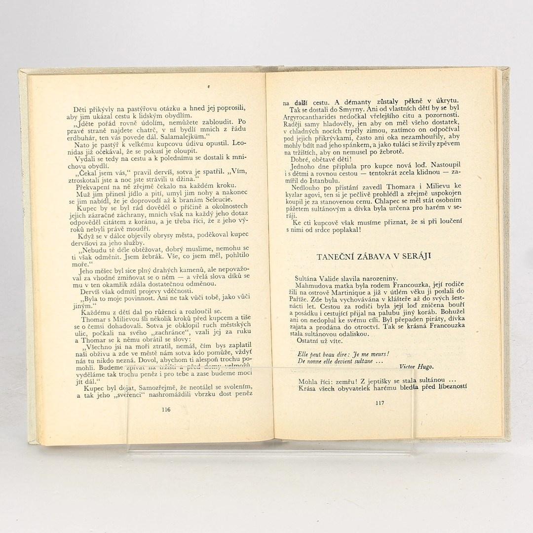 Kniha Poslední dny janičárů