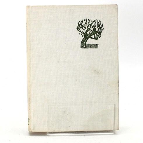 Dobrodružná povídka Věčně zpívají lesy